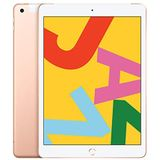 Apple iPad (10,2-inch, Wi-Fi + Cellular, 32 GB) - Goud