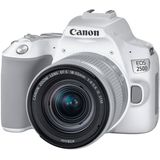 Canon EOS 250D wit + 18-55mm F./4-5.6 IS STM SL