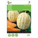 Meloenen Oranje Ananas - Cucumis melo
