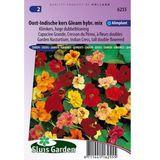 Sluis Garden - Oost-Indische kers Gl. Hybr. mix, hoge dubbelbloemig